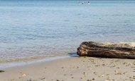 Домик у моря в бухте Витязь