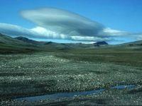Остров Врангель на Чукотке