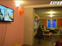 """Гостевой дом """"Ауринко"""""""